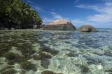 Indian Ocean  Seychelles  Mahe  St Anne Marine NP  Moyenne Island