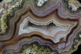 Banded Agate  Sammamish  Washington