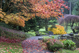 Bloedel Reserve Pathway Through Japanese Gardens in Fall Color