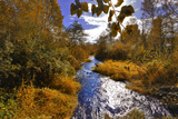 USA  Oregon Scenic of Dieckman Creek