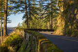 Columbia River Scenic Highway  Cascade Mountains  Oregon