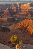 USA  Utah  Dead Horse Point State Park Sunrise on Colorado River