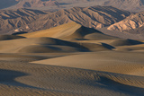 Undulating Sand Dunes of Death Valley in Golden Light