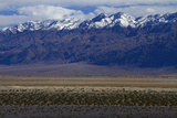 Death Valley and Grapevine Mountains  Mojave Desert  California