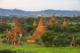 Temples in the Jungle at Sunrise  Bagan  Mandalay Region  Myanmar