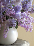 Lilac Flowers in Vase