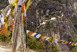 Prayer Flags Along Trail to Takshang Monastery (Tiger's Nest)  Bhutan
