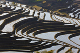 Reflections Off Water Filled Rice Terraces  Yuanyang  Honghe  China