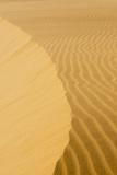 Sand Dunes  Medanos de Coro NP  Near Coro  Falcon State  Venezuela
