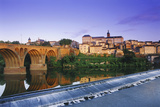 The Old Bridge over the River Tarn  Albi  Languedoc-Roussillon  France