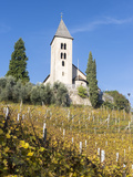 St Jakob in Kastelaz in the Vineyards of Tramin  South Tyrol  Italy
