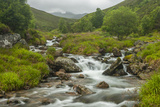 Europe  Scotland  Cairngorm National Park Mountain Stream Cascade