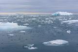 Norway Nordaustlandet Island Brasvelbreen Brash Ice in the Water