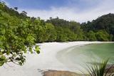 Emerald Bay  Beach and Palm Trees  Palau Pangkor Laut  Malaysia