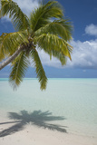 Cook Islands  Aitutaki One Foot Island White Sand Beach with Trees