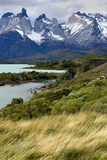 Chile  Patagonia Torres del Paine National Park with Grasses