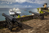 Cannon of Fort Georges  Saint Georges  Grenada  West Indies