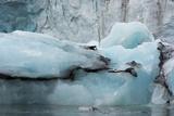 Norway Svalbard Spitsbergen Hornsund Brepollen