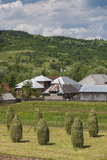 Romania  Maramures Region  Rona de Jos  Village View with Haystacks