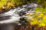 Duck Brook in Fall in Maine's Acadia National Park