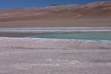 Altiplano  Chile  in the Atacama Desert Is This Green Lagoon