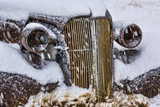 USA  California  Bodie Close-up of Vintage Car Body in Snowfall