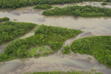 Sandbank in Napo River  Amazon Rainforest  Ecuador