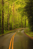 Tennessee  Road at Tremont in the Smoky Mountains NP