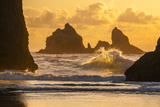 USA  Oregon  Bandon Shore Scenic