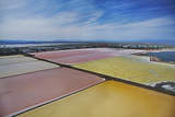 California  San Francisco  Colorful Algae in Salt Evaporation Ponds