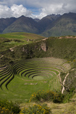 Circular Inca Terraces of Moray  Cusco Region  Urubamba Province  Peru