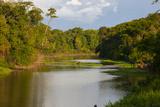 Yurapa River  a Tributary of the Ucayali River  Amazon Basin  Peru