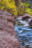 USA  Utah  Zion National Park Stream in Autumn Landscape