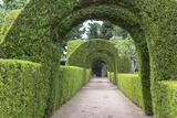 Europe  Portugal  Vila Real  Palace of Mateus  Formal Garden