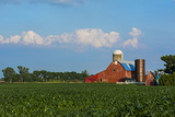 Farm with Red Barn and Corn  Milford Center  Ohio