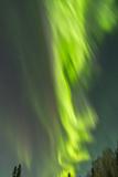 USA  Alaska  Central Alaska  Aurora  Northern Lights