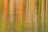 USA  Idaho Reflections on Redfish Lake