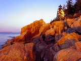 Acadia NP  Maine Bass Harbor Head Lighthouse at Sunrise