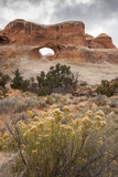 USA  Utah  Arches National Park Scenic of Tunnel Arch