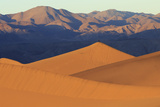 A Photographer on a Sand Dune at Sunrise  Mesquite Dunes  Death Valley
