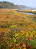 USA  Maine  Kennebunkport Tidal Marsh on the Mousam River