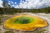 Morning Glory Pool  Yellowstone National Park  Wyoming  USA