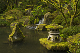 Lower Pond in the Portland Japanese Garden  Portland  Oregon