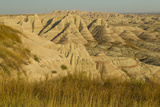 USA  South Dakota  Badlands NP Grass and Eroded Formations