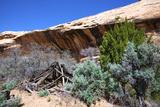 Double Stack Anasazi Ruin in Butler Wash  Cedar Mesa  Utah