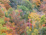 Michigan  Upper Peninsula Autumn in Porcupine Mountains Wilderness SP