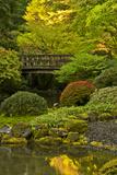 Moon Bridge  Spring  Portland Japanese Garden  Portland  Oregon  USA