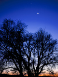 Utah Venus  the Moon  and Jupiter in a Compact Grouping in the Sky
