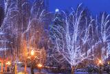 Christmas Lighting Festival  Leavenworth  Bavarian Village  Washington