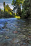 USA  Oregon  Mt Hood National Forest Sandy River Landscape